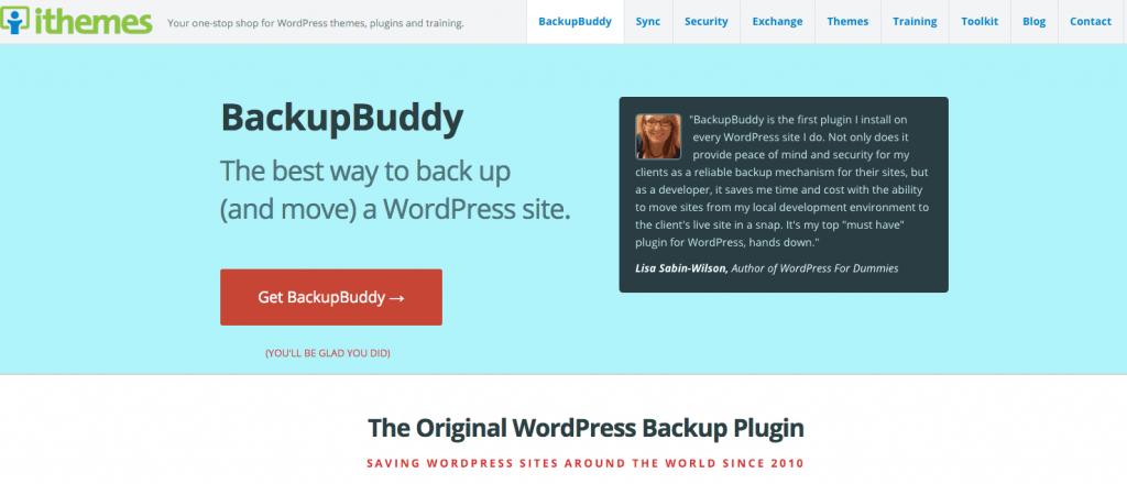 Backup Buddy WordPress Review